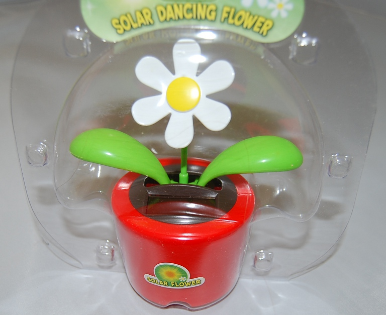 Red Solar Dancing Flower/